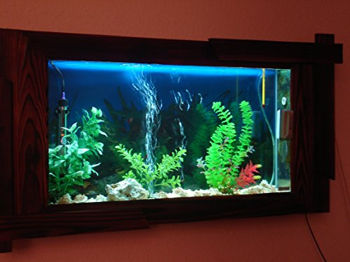 Wandaquarium- Dark Wood 160, Panorama Aquarium – Wall Aquarium - 2
