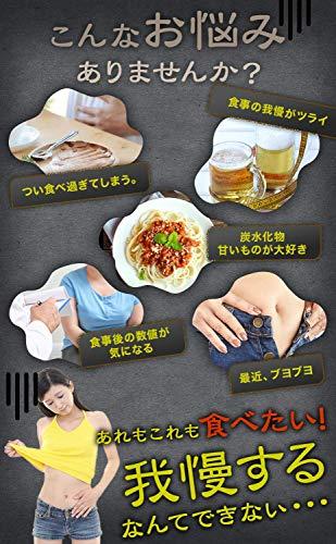 サラシアゴールドサラシアクルクミンウコン菊芋キトサンデキストリンサプリサラシア10800mg60粒