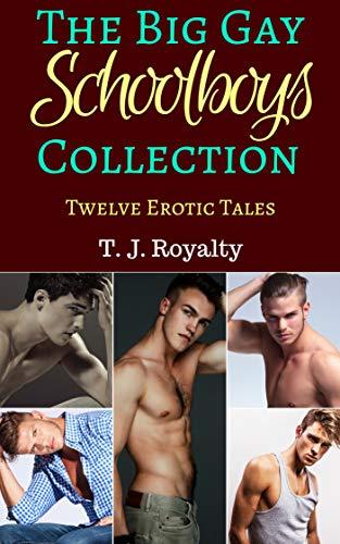 The Big Gay Schoolboy Collection: Twelve Erotic Tales (Big Gay Collections Book 1) (English Edition)