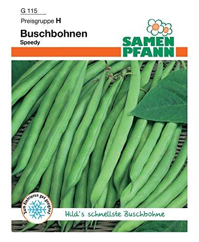Samen Pfann G115 Buschbohne Speedy (Buschbohnensamen)