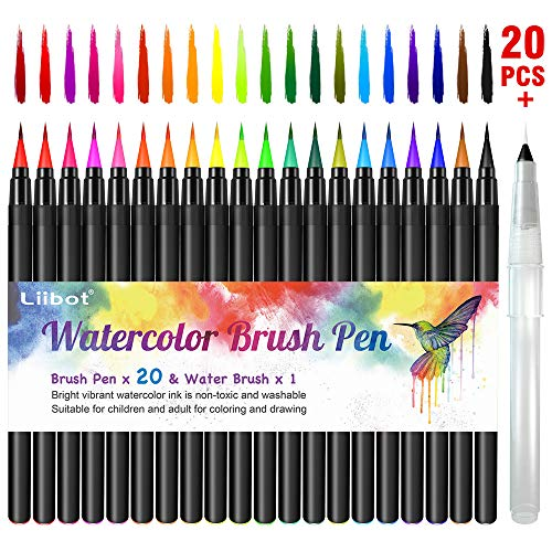 Xwu 20 colored pens set and 1 water coloring brush with soft flexible tips, color pens markers for painting, coloring, comic, calligraphy (20 colors)