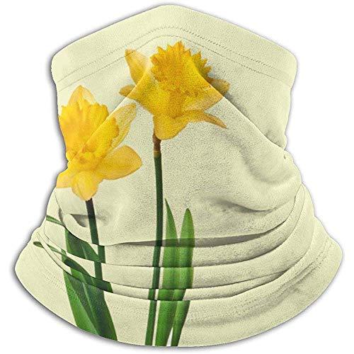 Hey Judey Gelbe Frühlings-Narzissen-Narzissen-Schablonen-Ski-Masken-Kaltes Wetter-Gesichtsmasken-Hals-Wärmer-Vlies-Hauben-Winter-Hüte