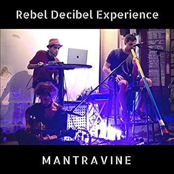 Rebel Decibel Experience