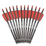 ELONG OUTDOOR 7,5'Armbrustbolzen Armbrust Carbon Pfeile mit 2' Flügeln für Jagd- und Zielbogenschießen Schießen Armbrust Carbon Bolzen (12er Pack)