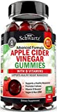 Vegan Apple Cider Vinegar Gummies with The Mother & B Vitamins - Immune Support & Healthy Weight Management - 90 ACV Gummies for Women & Men - Keto Friendly - 1 ACV Gummy Equals 1 Full Serving