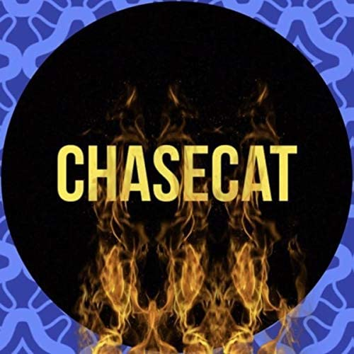 ChaseCat