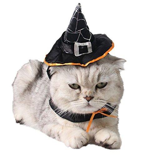 Sombrero de bruja ajustable para mascotas.