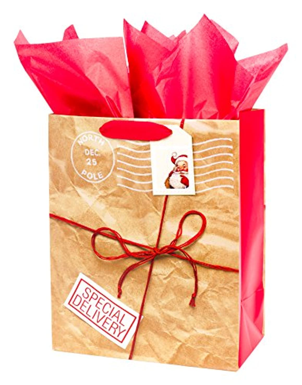 Hallmark Large Christmas Gift Bag with Tissue Paper (Stamp Tag)