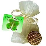 EnerChrom Blume des Lebens Glücksmünze Viel Glück - 1 Stück Farbe Gold - Glücksbringer Lebensblume Talisman Hosentasche