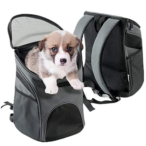 Zodae Hunderucksack Haustier Katze Tragetasche Stoff Schulterriemen Haustier Rucksack für Kleine Hunde und Katzen