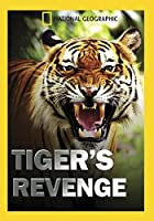 Tiger's Revenge [DVD] [Import]