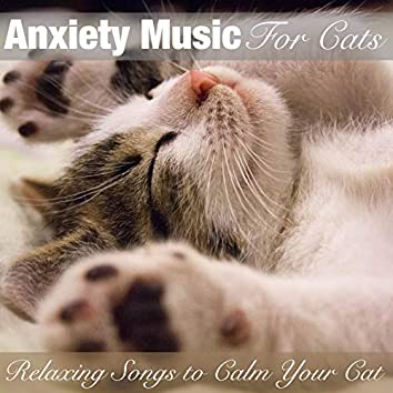 Anxiety Music for Cats: Relaxing Songs to Calm Your Cat