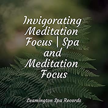 Invigorating Meditation Focus   Spa and Meditation Focus