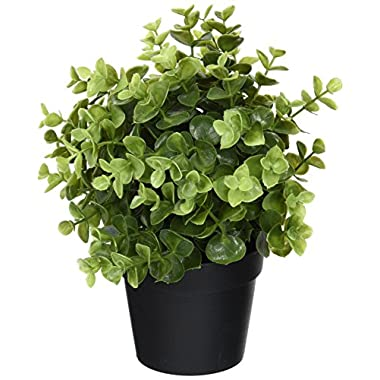 Ikea Artificial Potted Plant, Jade, 9.5 Inch