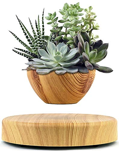 Levitating Plant Floating Planter Pot - Magnetic Levitation Floating Plant - Suspended Plant Pot and Floating Tree Decor with Beautifull Style