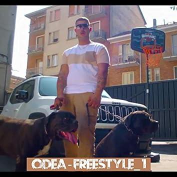 Bro Freestyle #1