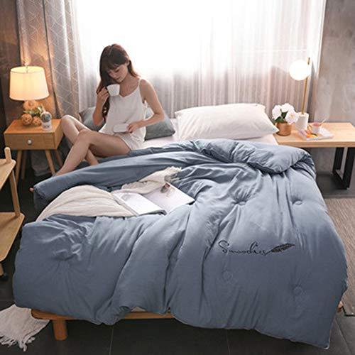 Xianw Queen-Size-Down-Alternative Tröster - Bettbezug, 100% Down Alternative Fill,B,220X240cm(87X94inch)