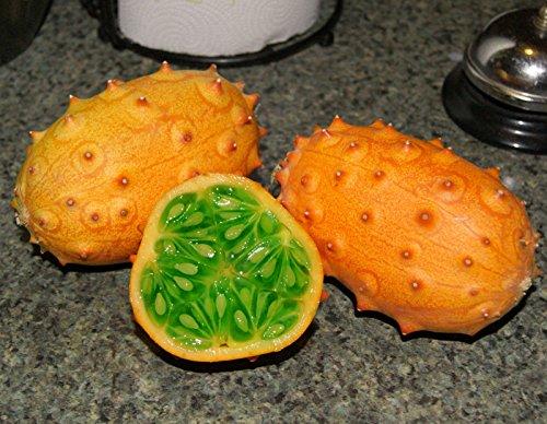 10 GIGANTE RARO africana Kiwano melón de cuernos Semillas Cucumis metuliferus