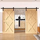 WINSOON 10FT Antique Double Sliding Barn Door Hardware Roller Track Kit Black, 4-18FT for Choose