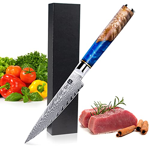[5 inch]Kitchen Utility Knife 5 Inch Paring Knife Sharp-edged Paring knife 67 Layers Damascus VG10 Blade Ergonomic Handle Cutting Edge Cutlery Cutting Small Fruit Knife