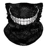 FRAUIT Multifunktionstuch Herren & Damen Biker Bandana Nahtloses- Wind Face Shield - 3D Cool Halstuch Schlauchtuch, Schal, Kopftuch, Stirnband, Lustig -Tuch Halsschlauch Halstuch
