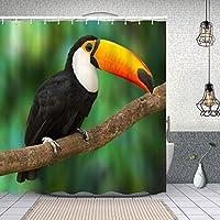 シャワーカーテン大きなくちばしの動物相の鳥の赤い美しいトコ鳥の木の木 防水 目隠し 速乾 高級 ポリエステル生地 遮像 浴室 バスカーテン お風呂カーテン 間仕切りリング付のシャワーカーテン 180 x 180cm