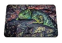 22cmx18cm マウスパッド (トカゲ爬虫類石色) パターンカスタムの マウスパッド