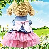 DULING Ropa para Perros, Falda Vaquera para Gatos, Ropa para Mascotas de Primavera y Verano, Falda Vaquera Coreana de Hilo Rosa, XXL