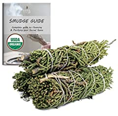 """🌿 JUNIPER SAGE: Smudging with Juniper creates a safe, protective, positive, healing space when negative energy is removed. Juniper berries are energetically and physically detoxifying as well as centering. Juniper has a sweet and spicy """"Christmas tre..."""
