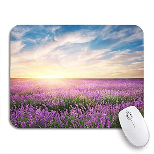 alfombrilla de ratón campo púrpura prado de lavanda composición de la naturaleza lavanda azul respaldo de goma antideslizante alfombrilla de ratón de computadora para cuadernos alfombrillas de ratón