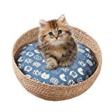 Blue cat:Breathable and Soft Hand Made Paper Rope Rattan Round Bed with Pillows are Good for Cats or Small Medium-Size Dogs Sleep