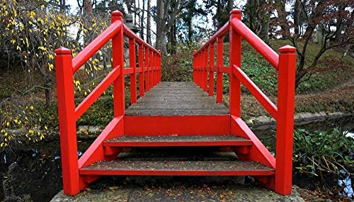 No-Do-it-yourself digitale schilderij voor kinderen volwassenen mens showing Red Wooden Bridge