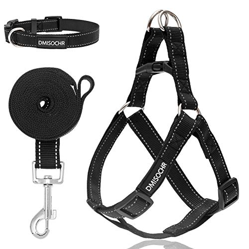 DMISOCHR Dog Harness and Leash Set with Collar - No Pull Dog Harness for Small, Medium, Large Dogs - Step in Dog Harness Escape Proof for Walking Running Hiking Camping - Reflective Doggy Harness