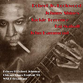 Chicago Blues Festival (Live 1991)