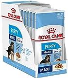 Royal Canin Hundefutter für Welpen/Junior, 40...