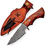 10 Inch Damascus knife Handmade Hunting Knife with Sheath Fixed blade knife Non-Slip Walnut wood Handle