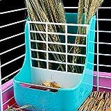 MINGZE Alimentatore di Fieno, Alimentatore di plastica, per Coniglietti in plastica per Animali 2 in 1 Mangiatoie per Fieno per Piccoli Animali, Coniglio, porcellino d'india, galesaur, Furetto (Blu)