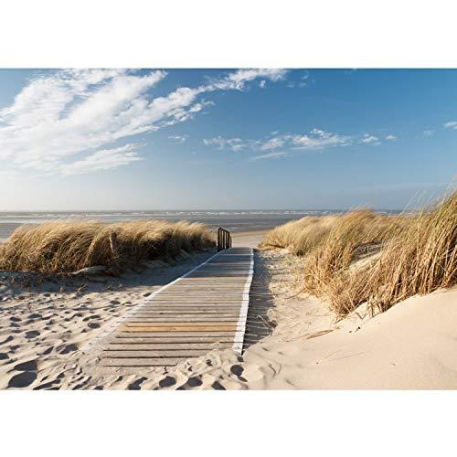 Fototapete Wand Foto Tapete Bild Vliestapete selbstklebende Textiltapete - NORTH SEA DUNES - Strand Meer Nordsee Ostsee Beach Wasser Blau Himmel Sonne Sommer, Größe:350x245cm Vlies