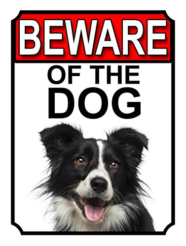 SHAWPRINT attenti al cane metal Gate Sign Border Collie 200 mm x 10 mm (1114H1)