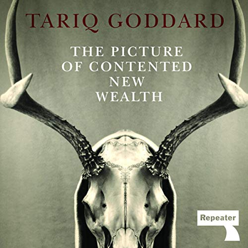 The Picture of Contented New Wealth cover art