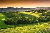 Impresión de cartelItalia Toscana campo verde naturaleza decoración de la pared decoración de la habitación decoración del hogar 50x70cm sin marco