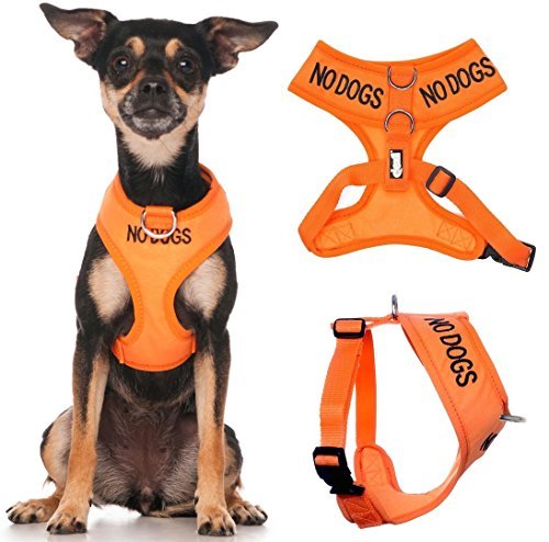 NO DOGS (Not good with other dogs) Orange Color Coded Non-Pull Front and Back D Ring Padded and Waterproof Vest Dog Harness PREVENTS Accidents By Warning Others Of Your Dog In Advance (XS)