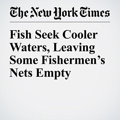Fish Seek Cooler Waters, Leaving Some Fishermen's Nets Empty copertina