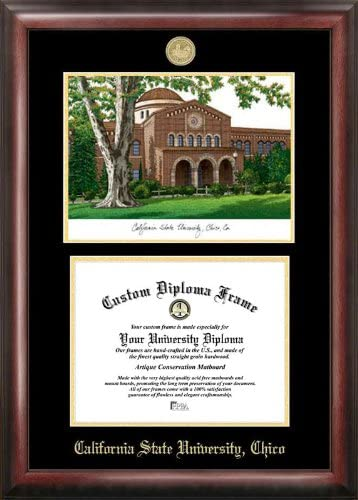 Popularity Campus Manufacturer OFFicial shop Images California State University D Embossed Chico Gold