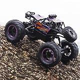DAYINGTAO 1/18 escala Rc coche 4WD todo terreno aleación vehículo, 2.4Ghz eléctrico teledirigido coche, Bigfoot Monster escalada camión, Hobby juguete para niños y adultos, RTR