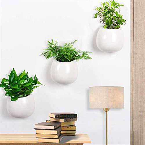 Lot de 3 Pot pour Plantes Mural Céramique,Petit à fixation murale Fleur Plante Vase Pot de fleurs en céramique Pots à suspendre Succulente Cactus Jardinières pour maison/bureau/jardin/cadeau,Blanc