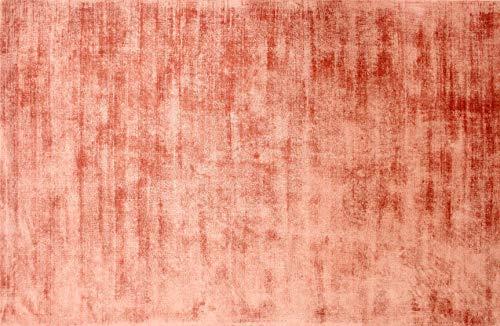 UNIVERS-DECOR Tapis en Viscose tissé à la Main Used 90 x 150 cm (Terracotta, Tapis Viscose tissé à la Main 90 x 150 cm)