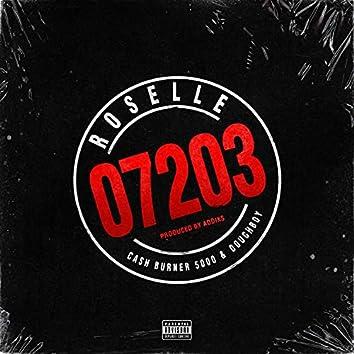 Roselle 07203