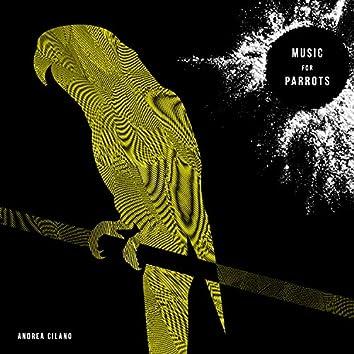 Music for Parrots