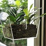 NIUXX Acryl Fenster Pflanzgefäße, kreative Blumentopfhalter Pflanzen Tablett Regal mit Saugnapf, große Outdoor Indoor dekorative Geschenk für Zuhause (M 20x10x13cm)
